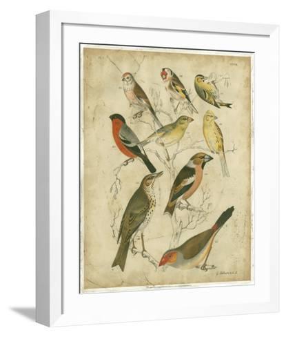 Avian Gathering II-G^ Lubbert-Framed Art Print
