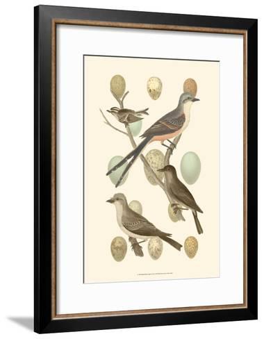 British Birds and Eggs I--Framed Art Print