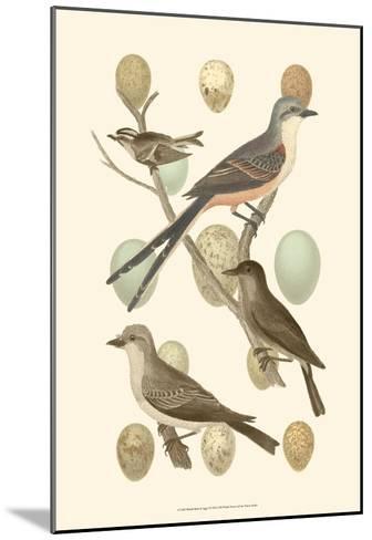 British Birds and Eggs I--Mounted Art Print