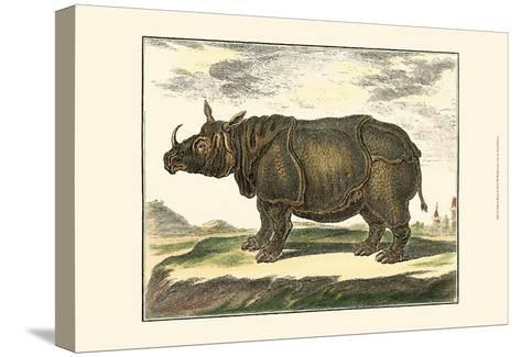 Diderot Rhino-Denis Diderot-Stretched Canvas Print