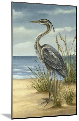 Shore Bird II-Ethan Harper-Mounted Art Print