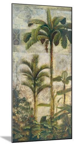 Enchanted Oasis II-Douglas-Mounted Giclee Print
