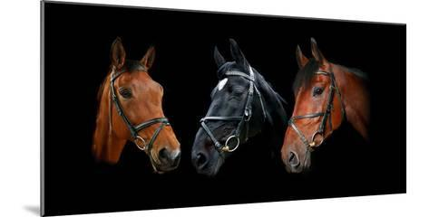 Dynasty-Lesley Wood-Mounted Giclee Print