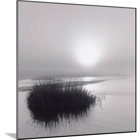Fog over Katama-Michael Kahn-Mounted Giclee Print