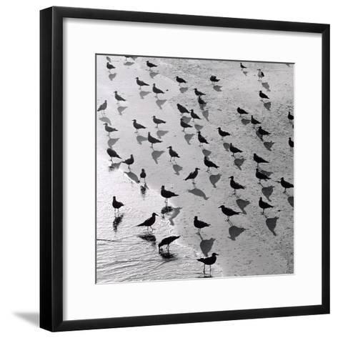 Escher's Seagulls-Michael Kahn-Framed Art Print