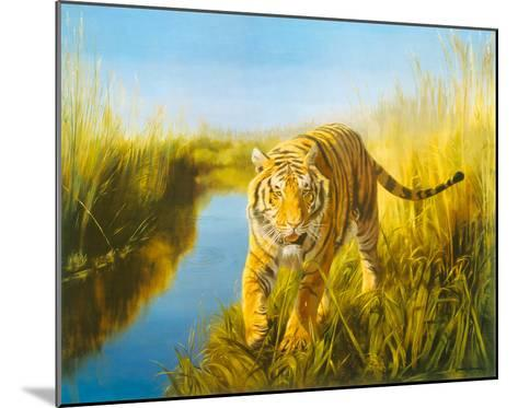 Tiger In The Indian Sunderbans-Leonard Pearman-Mounted Giclee Print