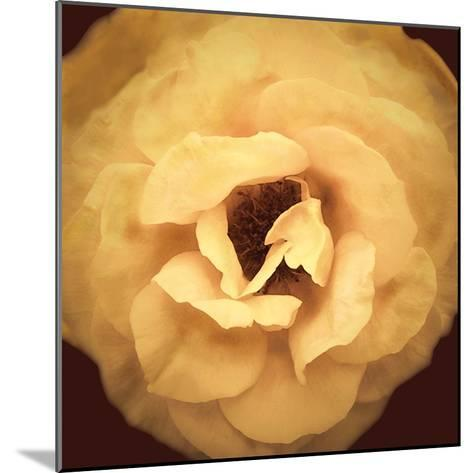 Amber Rose-Katja Marzahn-Mounted Giclee Print