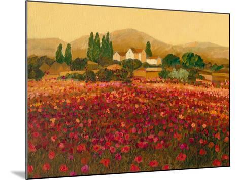 Evening Light, Languedoc-Hazel Barker-Mounted Giclee Print