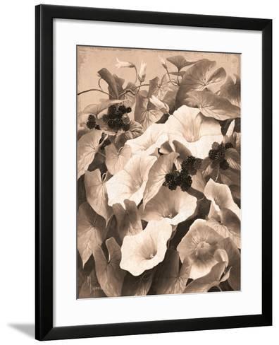 Convolvulus and Blackberries (Sepia)-Mary Dipnall-Framed Art Print