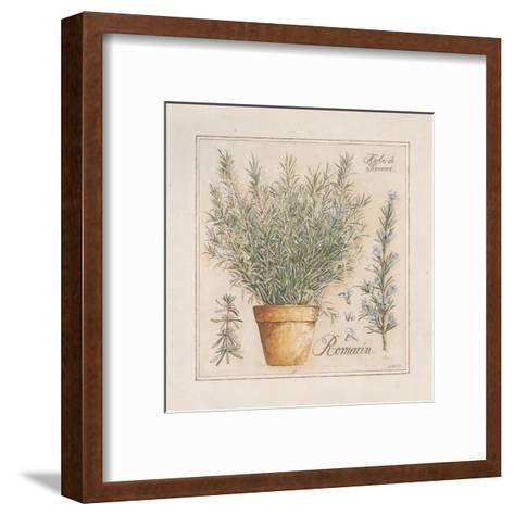 Herbes de Provence III-Laurence David-Framed Art Print