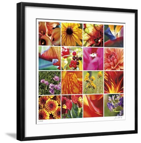 Floral Square Ensemble-Joy Doherty-Framed Art Print
