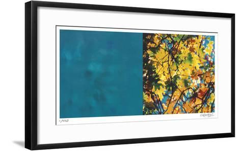 Exposure 101-Teresa Camozzi-Framed Art Print