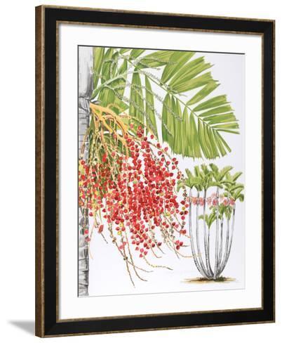 Mcarthur Palm-Marion Sheehan-Framed Art Print