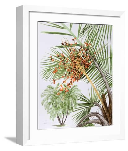 Pheonix Palm-Marion Sheehan-Framed Art Print