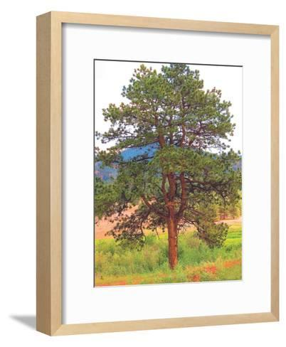 Lone Tree-Joseph Charity-Framed Art Print