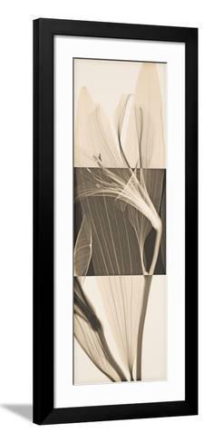 Peruvian Lily II-Steven N^ Meyers-Framed Art Print