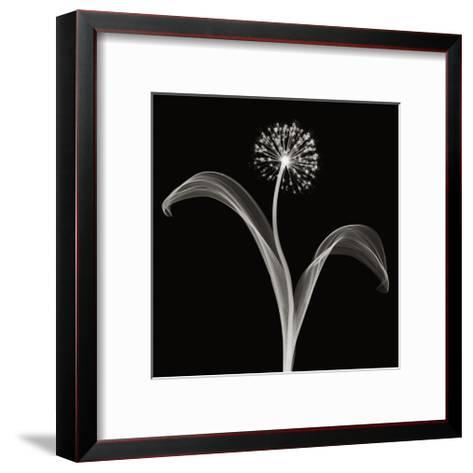Into the Night I-Jim Wehtje-Framed Art Print