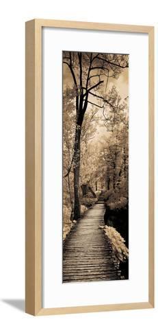 A Quiet Stroll I-Ily Szilagyi-Framed Art Print