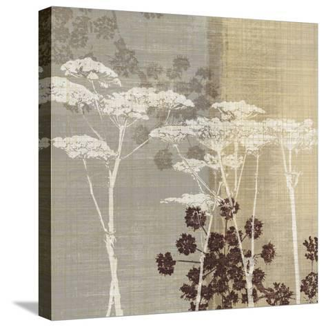 Lace I-Tandi Venter-Stretched Canvas Print