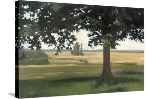 Hidden Pasture-Megan Lightell-Stretched Canvas Print