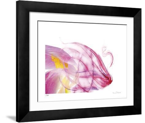 Purple Tulip Abstract No 128-Shams Rasheed-Framed Art Print