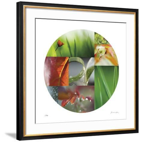Coquelicot Circle-Florence Delva-Framed Art Print