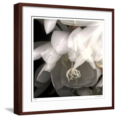 Florals 12-Kate Blacklock-Framed Art Print
