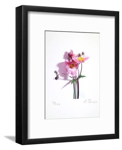 Anemone-Gerhard Treichel-Framed Art Print