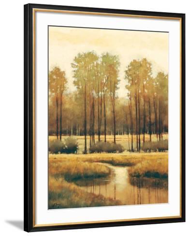 Summer Sunset-Shanna Kunz-Framed Art Print