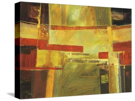 573-Lisa Fertig-Stretched Canvas Print