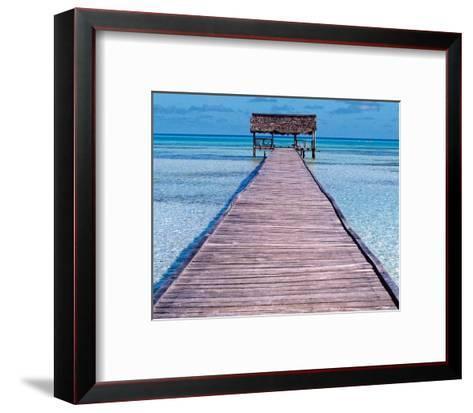 Seychelles I-Nicolas Bialylew-Framed Art Print