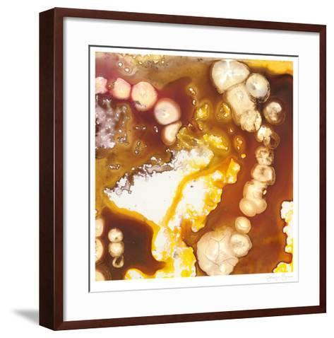 Geodesic I-Jennifer Goldberger-Framed Art Print