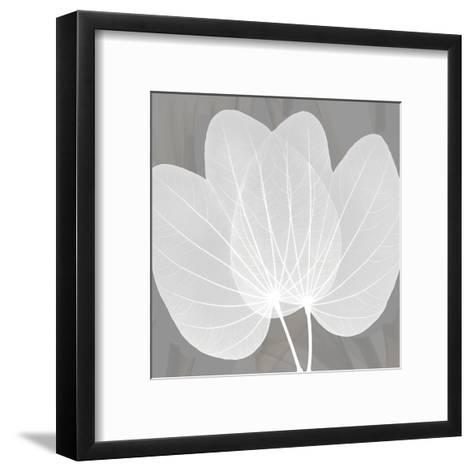 Grey Beauty-Albert Koetsier-Framed Art Print