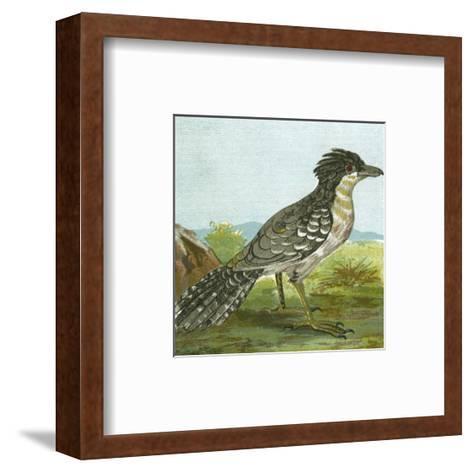 Mini Vintage Birds V--Framed Art Print