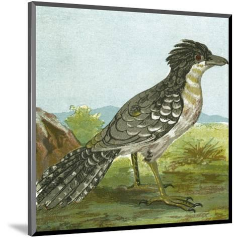 Mini Vintage Birds V--Mounted Art Print