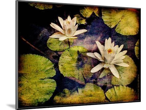 Lily Ponds V-Robert Mcclintock-Mounted Art Print