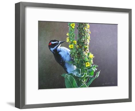 Woodpecker Mullen-Chris Vest-Framed Art Print