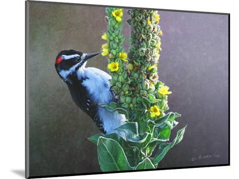Woodpecker Mullen-Chris Vest-Mounted Art Print