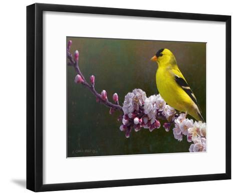 Goldfinch Flowers-Chris Vest-Framed Art Print
