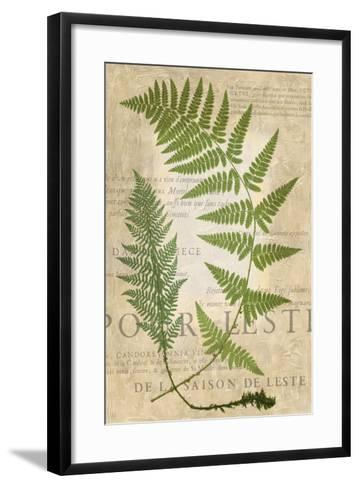 Fern Folio IV-Vision Studio-Framed Art Print