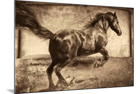 Free Spirit-Jennifer Broussard-Mounted Art Print