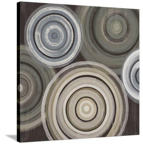 Spin Cycle-Elizabeth Jardine-Stretched Canvas Print