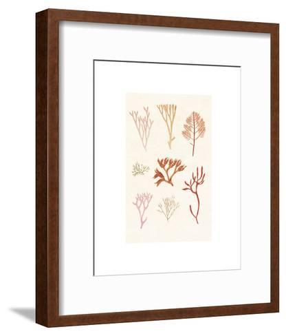 Algae 7--Framed Art Print