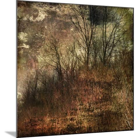 Forest 4-Jean-Fran?ois Dupuis-Mounted Art Print