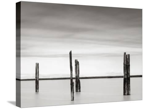 Cluster of Posts II-Lawrence Hislop-Stretched Canvas Print