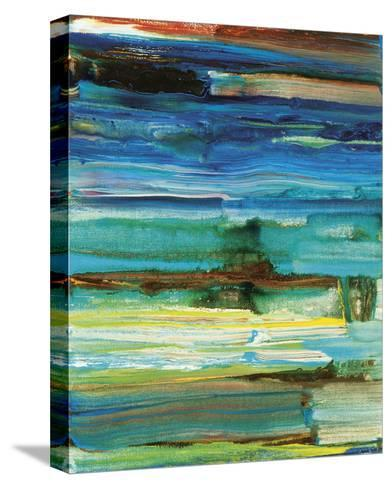 Reflection?s Rock No. 6-Joan Davis-Stretched Canvas Print