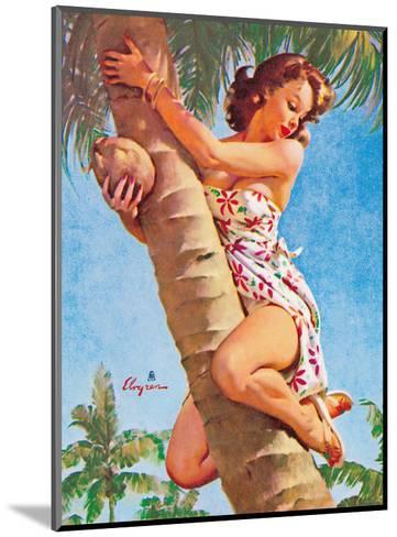 Pick of the Crop (Up a Tree) - Hawaiian Pin Up Girl-Gil Elvgren-Mounted Art Print