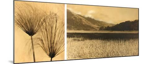 Bolinas Lagoon #7-Jan Gauthier-Mounted Art Print