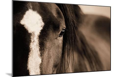 Dark Eyes-Lisa Dearing-Mounted Art Print