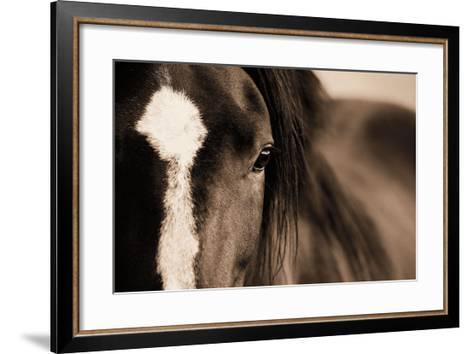 Dark Eyes-Lisa Dearing-Framed Art Print